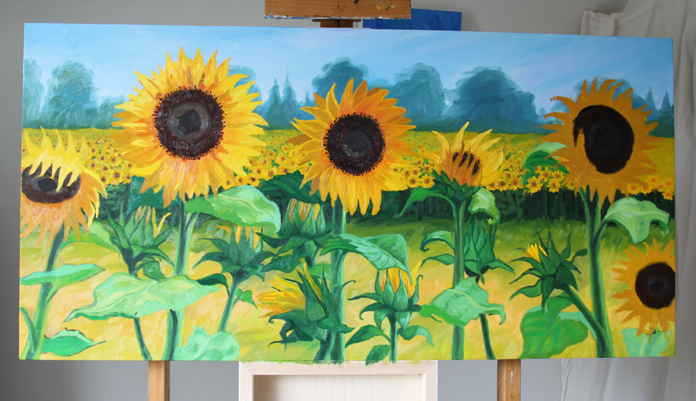 sunflowers-progress-june